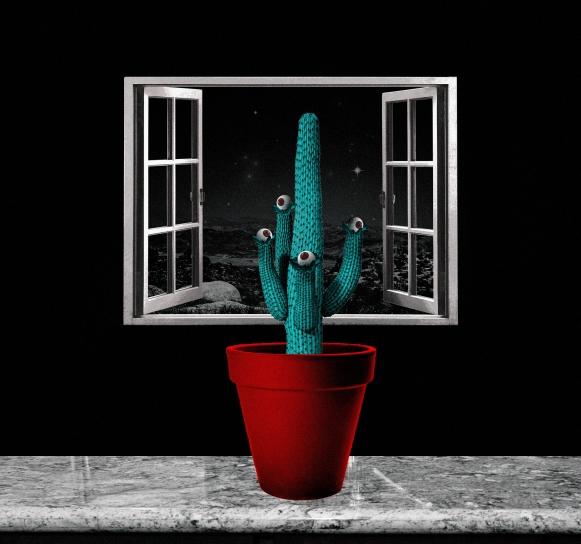cactus copy